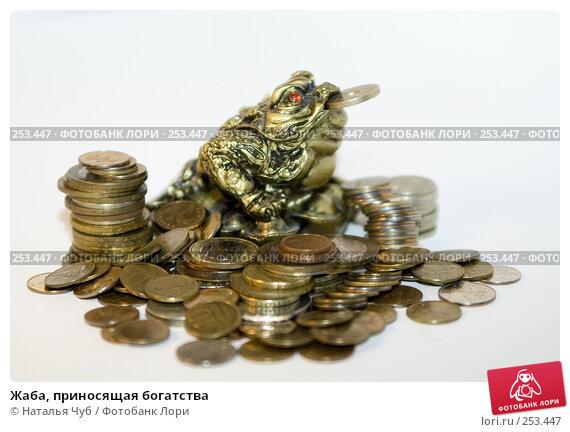 Жаба, приносящая богатства, фото № 253447, снято 9 апреля 2008 г. (c) Наталья Чуб / Фотобанк Лори