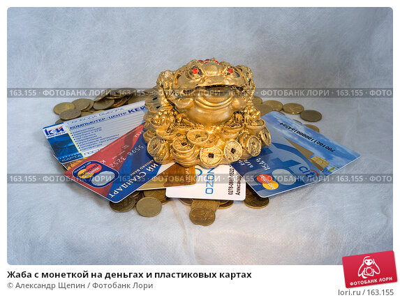 Жаба с монеткой на деньгах и пластиковых картах, эксклюзивное фото № 163155, снято 29 декабря 2007 г. (c) Александр Щепин / Фотобанк Лори