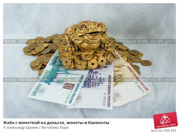 Жаба с монеткой на деньгах, монеты и банкноты, эксклюзивное фото № 163151, снято 29 декабря 2007 г. (c) Александр Щепин / Фотобанк Лори