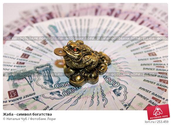 Купить «Жаба - символ богатства», фото № 253459, снято 9 апреля 2008 г. (c) Наталья Чуб / Фотобанк Лори