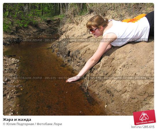 Жара и жажда, фото № 285615, снято 10 мая 2008 г. (c) Юлия Селезнева / Фотобанк Лори