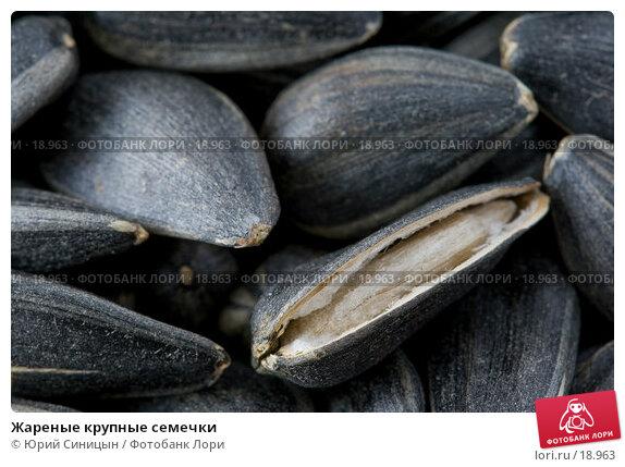 Жареные крупные семечки, фото № 18963, снято 22 февраля 2007 г. (c) Юрий Синицын / Фотобанк Лори