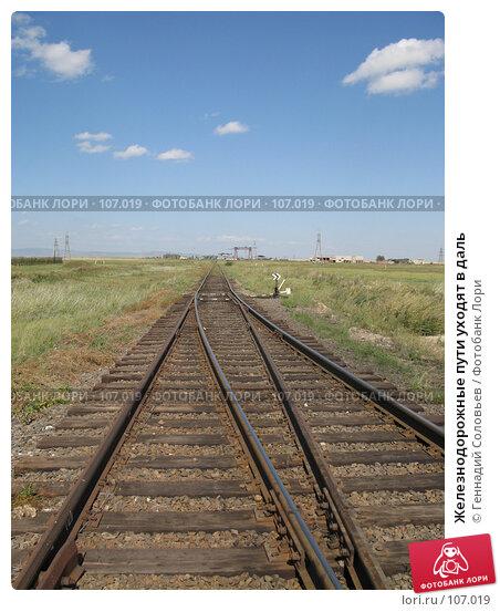 Купить «Железнодорожные пути уходят в даль», фото № 107019, снято 31 августа 2007 г. (c) Геннадий Соловьев / Фотобанк Лори