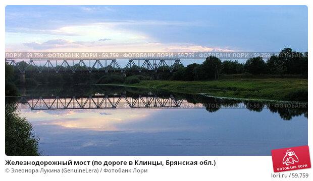 Железнодорожный мост (по дороге в Клинцы, Брянская обл.), фото № 59759, снято 26 июня 2017 г. (c) Элеонора Лукина (GenuineLera) / Фотобанк Лори