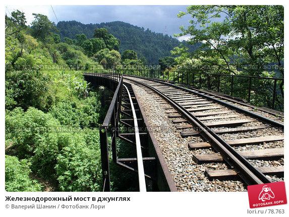 Железнодорожный мост в джунглях, фото № 78763, снято 7 июня 2007 г. (c) Валерий Шанин / Фотобанк Лори