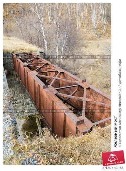 Железный мост, фото № 40183, снято 15 октября 2006 г. (c) Саломатов Александр Николаевич / Фотобанк Лори