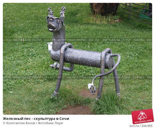 Железный пес - скульптура в Сочи, фото № 334955, снято 21 февраля 2017 г. (c) Константин Босов / Фотобанк Лори