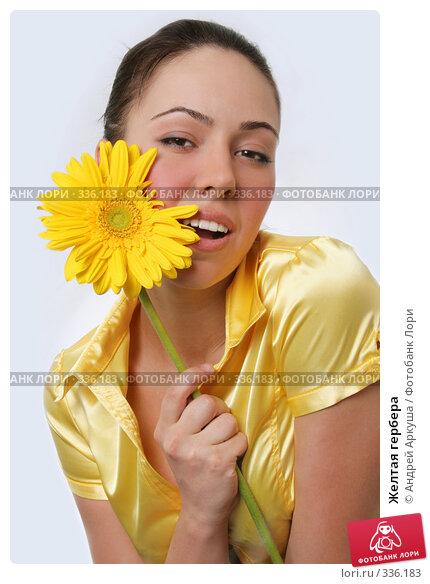 Желтая гербера, фото № 336183, снято 5 апреля 2008 г. (c) Андрей Аркуша / Фотобанк Лори