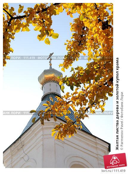 Желтая листва дерева и золотой купол храма, фото № 111419, снято 25 октября 2007 г. (c) Parmenov Pavel / Фотобанк Лори