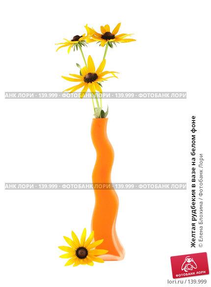 Желтая рудбекия в вазе на белом фоне, фото № 139999, снято 12 июля 2007 г. (c) Елена Блохина / Фотобанк Лори
