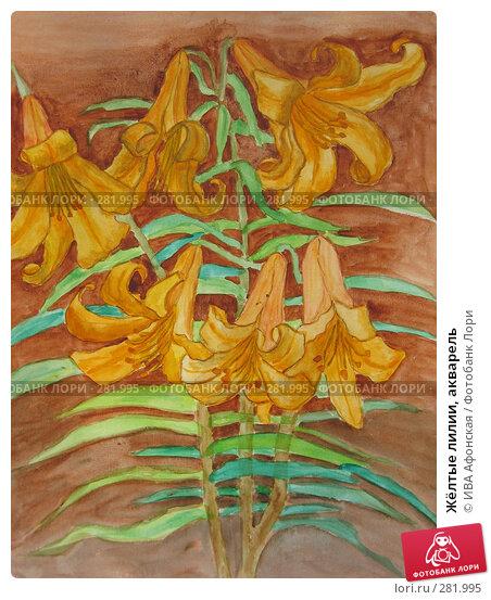 Жёлтые лилии, акварель, фото № 281995, снято 13 апреля 2008 г. (c) ИВА Афонская / Фотобанк Лори