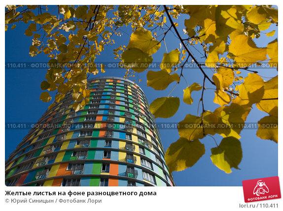 Желтые листья на фоне разноцветного дома, фото № 110411, снято 26 сентября 2007 г. (c) Юрий Синицын / Фотобанк Лори