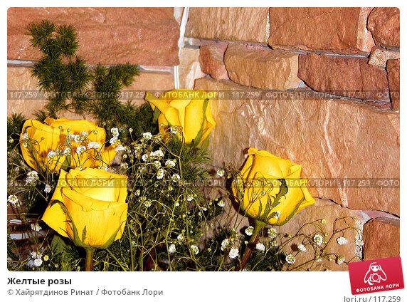 Желтые розы, фото № 117259, снято 17 декабря 2005 г. (c) Хайрятдинов Ринат / Фотобанк Лори