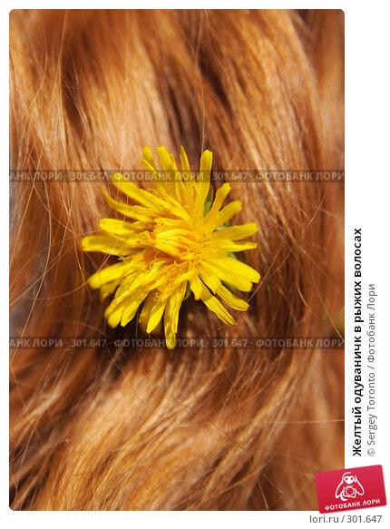 Желтый одуваничк в рыжих волосах, фото № 301647, снято 17 мая 2008 г. (c) Sergey Toronto / Фотобанк Лори