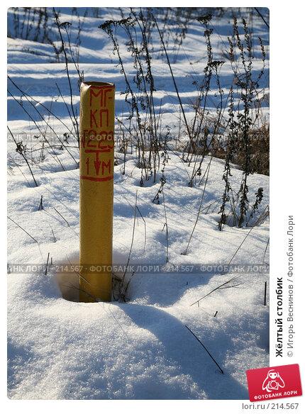 Жёлтый столбик, фото № 214567, снято 16 февраля 2008 г. (c) Игорь Веснинов / Фотобанк Лори