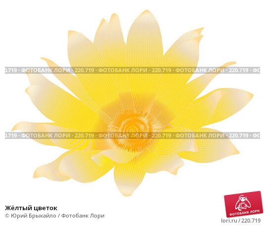 Жёлтый цветок, иллюстрация № 220719 (c) Юрий Брыкайло / Фотобанк Лори