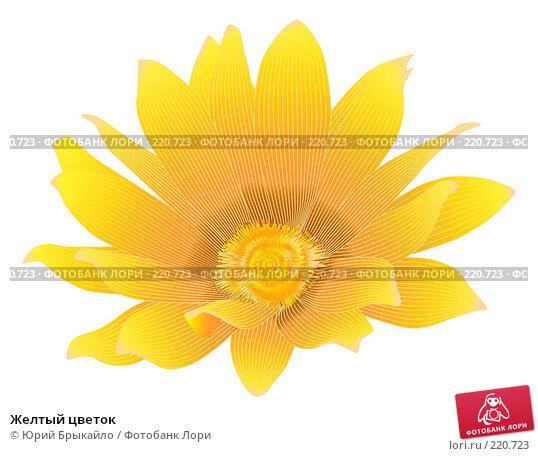 Купить «Желтый цветок», иллюстрация № 220723 (c) Юрий Брыкайло / Фотобанк Лори