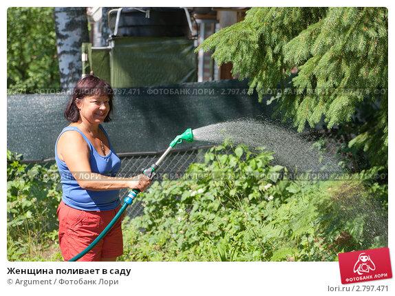 Купить «Женщина поливает в саду», фото № 2797471, снято 2 июля 2011 г. (c) Argument / Фотобанк Лори