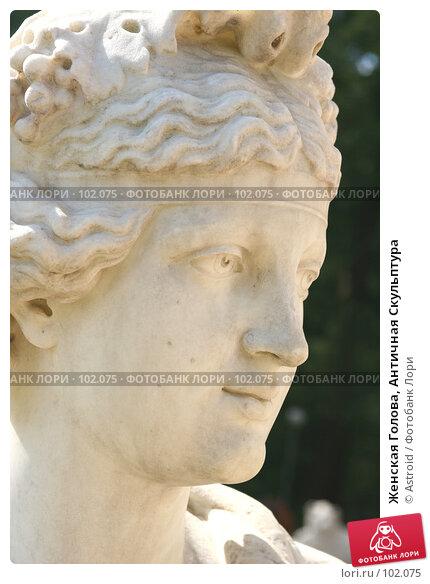 Женская Голова, Античная Скульптура, фото № 102075, снято 28 мая 2017 г. (c) Astroid / Фотобанк Лори
