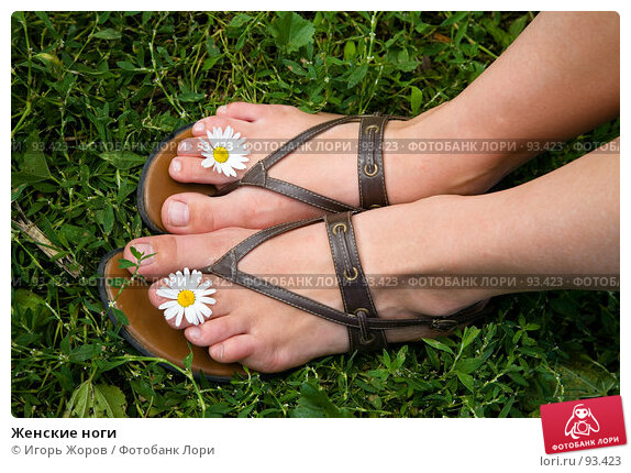Женские ноги, фото № 93423, снято 8 августа 2007 г. (c) Игорь Жоров / Фотобанк Лори