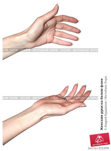 Купить «Женские руки на белом фоне», фото № 212079, снято 31 января 2008 г. (c) Андрей Бурдюков / Фотобанк Лори