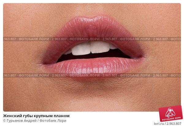 будем именно половые губы фото крупный план объявлений Чита Войти