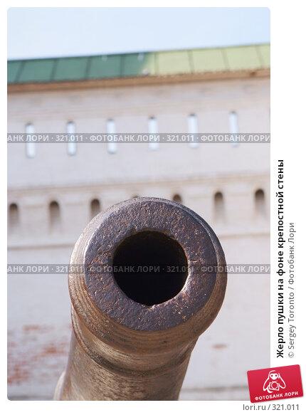 Купить «Жерло пушки на фоне крепостной стены», фото № 321011, снято 30 марта 2008 г. (c) Sergey Toronto / Фотобанк Лори