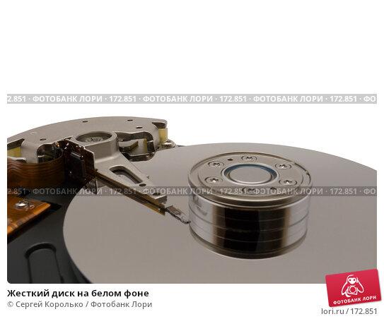 Купить «Жесткий диск на белом фоне», фото № 172851, снято 21 апреля 2018 г. (c) Сергей Королько / Фотобанк Лори