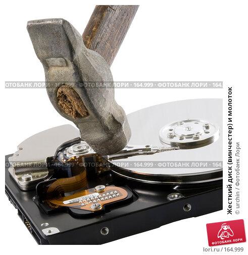 Купить «Жесткий диск (винчестер) и молоток», фото № 164999, снято 27 декабря 2007 г. (c) urchin / Фотобанк Лори