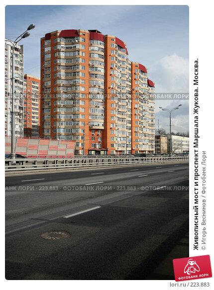 Живописный мост и проспект Маршала Жукова. Москва., фото № 223883, снято 15 марта 2008 г. (c) Игорь Веснинов / Фотобанк Лори