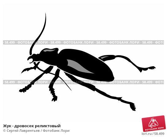 Жук - дровосек реликтовый, иллюстрация № 58499 (c) Сергей Лаврентьев / Фотобанк Лори