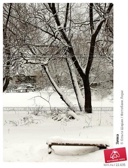 Зима, фото № 22635, снято 15 февраля 2007 г. (c) Ольга Шаран / Фотобанк Лори