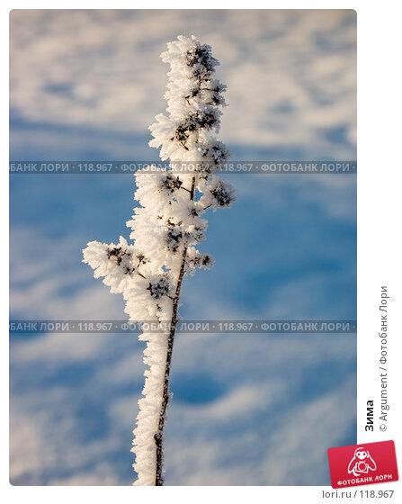 Зима, фото № 118967, снято 28 декабря 2004 г. (c) Argument / Фотобанк Лори