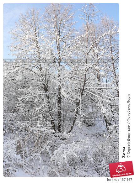 Зима, фото № 137167, снято 4 декабря 2007 г. (c) Сергей Девяткин / Фотобанк Лори