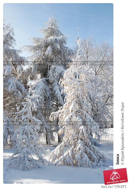 Зима, фото № 179071, снято 18 ноября 2007 г. (c) Юрий Брыкайло / Фотобанк Лори