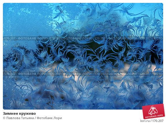 Зимнее кружево, фото № 170207, снято 3 января 2008 г. (c) Павлова Татьяна / Фотобанк Лори