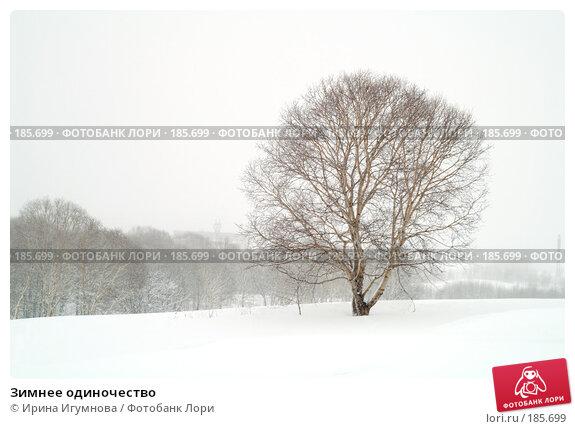 Зимнее одиночество, фото № 185699, снято 8 апреля 2007 г. (c) Ирина Игумнова / Фотобанк Лори