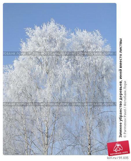 Зимнее убранство деревьев, иней вместо листвы, фото № 91035, снято 18 февраля 2006 г. (c) Parmenov Pavel / Фотобанк Лори