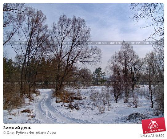 Зимний день, фото № 210899, снято 27 февраля 2008 г. (c) Олег Рубик / Фотобанк Лори
