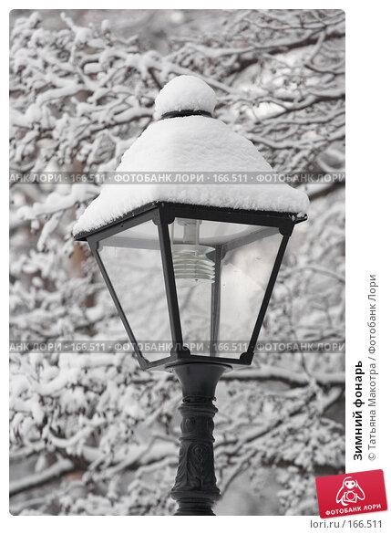 Зимний фонарь, фото № 166511, снято 15 февраля 2007 г. (c) Татьяна Макотра / Фотобанк Лори
