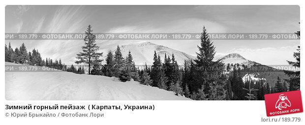 Зимний горный пейзаж  ( Карпаты, Украина), фото № 189779, снято 17 января 2017 г. (c) Юрий Брыкайло / Фотобанк Лори