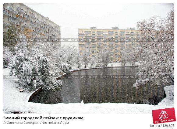 Зимний городской пейзаж с прудиком, фото № 129307, снято 15 октября 2007 г. (c) Светлана Силецкая / Фотобанк Лори