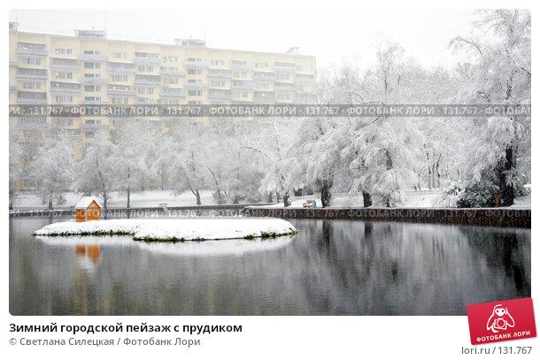 Купить «Зимний городской пейзаж с прудиком», фото № 131767, снято 15 октября 2007 г. (c) Светлана Силецкая / Фотобанк Лори