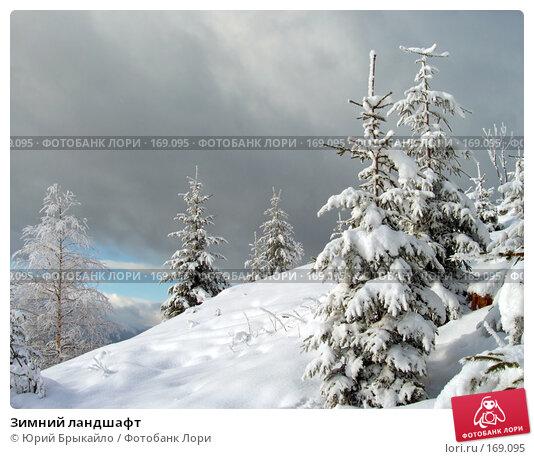 Зимний ландшафт, фото № 169095, снято 3 января 2005 г. (c) Юрий Брыкайло / Фотобанк Лори