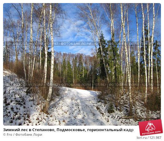 Купить «Зимний лес в Степаново, Подмосковье, горизонтальный кадр», фото № 121987, снято 4 января 2007 г. (c) Fro / Фотобанк Лори