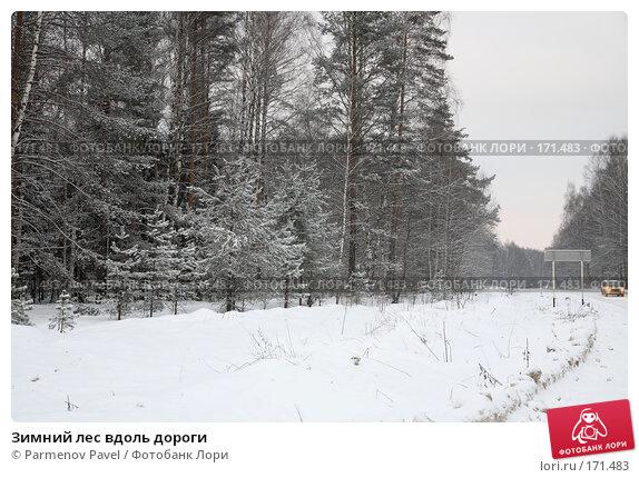Зимний лес вдоль дороги, фото № 171483, снято 2 января 2008 г. (c) Parmenov Pavel / Фотобанк Лори