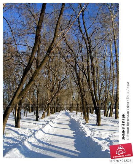 Купить «Зимний парк», фото № 94523, снято 25 февраля 2007 г. (c) Бяков Вячеслав / Фотобанк Лори
