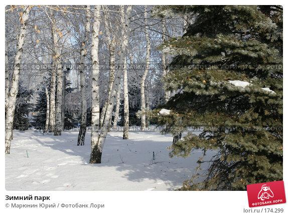 Зимний парк, фото № 174299, снято 27 декабря 2007 г. (c) Марюнин Юрий / Фотобанк Лори