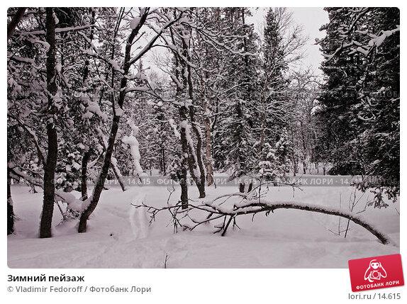 Зимний пейзаж, фото № 14615, снято 26 марта 2017 г. (c) Vladimir Fedoroff / Фотобанк Лори
