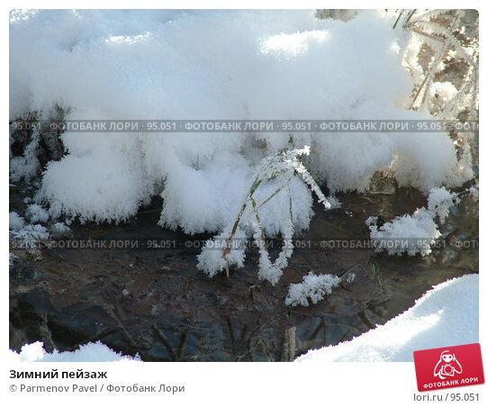 Купить «Зимний пейзаж», фото № 95051, снято 12 февраля 2007 г. (c) Parmenov Pavel / Фотобанк Лори